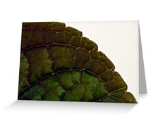 Leaf Details - Macro  Greeting Card