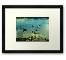 Evening is for Resting Framed Print
