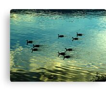 Evening is for Resting Canvas Print