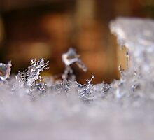 Ice crystals by Sandy Sparks