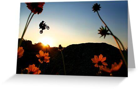 Flower & Power by steen