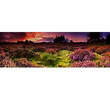 Dunwich Heath Panoramas. Photographic Print