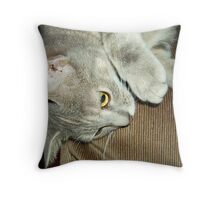 Beauty is in the Eyes of the Beholder Throw Pillow