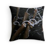 Flash Frost Throw Pillow