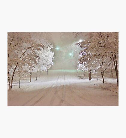 Winter Wonderland in Winston-Salem North Carolina 2-26-2015 Photographic Print