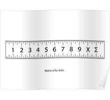 Dozenal Ruler - Metric is for dolts. Poster