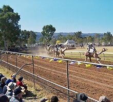 Camel race. by nJohnjewell