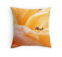 rose golden stinger  Throw Pillow