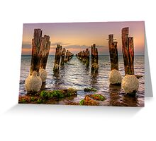 Old jetty at low tide - Clifton Springs Greeting Card