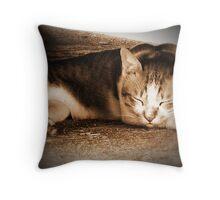 My Neighbour's Cat (2) Throw Pillow
