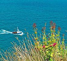 On The Edge, Devon, England by atomov