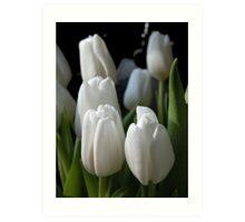 Moonlit tulips Art Print