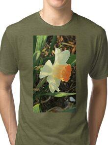Spring Daffodil Tri-blend T-Shirt