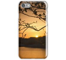 Sunset through a Tree iPhone Case/Skin