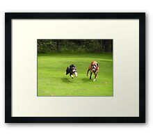 Mad Dogs Framed Print