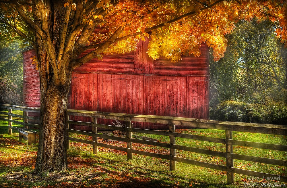 An old Red Barn by Mike  Savad