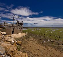 High and Dry by Paul Thompson
