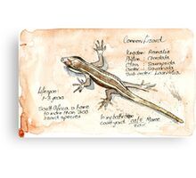 Lizards - Not so easy! Canvas Print