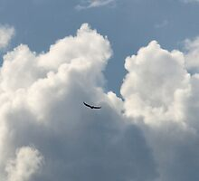 Clouds and friend by Seraphina6