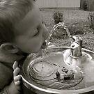 Water by Peter Bellamy