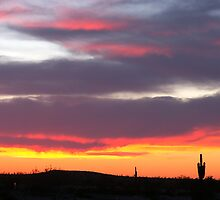 Sundown Arizona  by Judy Grant