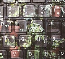 Keyboard + Nature by melissatsuzuki