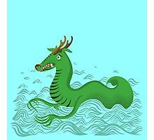 Sea Dragon Photographic Print