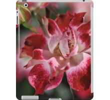 Red and White Rose iPad Case/Skin