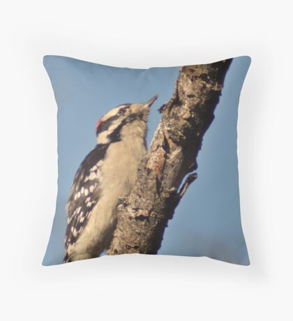 House Hunting Throw Pillow