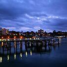 Ferry Sunset by Barbara Gordon