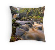 Thomason Foss Throw Pillow