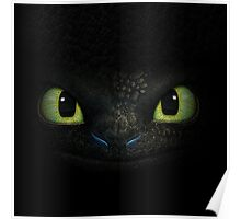 Toothless Night Furry Poster