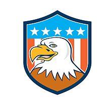 American Bald Eagle Head Smiling Flag Cartoon by patrimonio