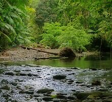 Cooper Creek by FASImages