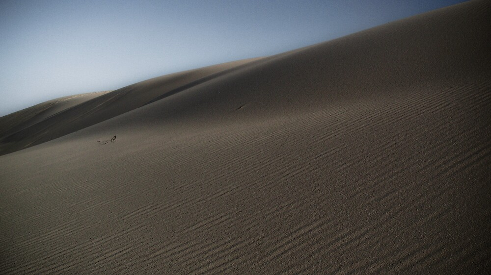 Dark Point Dune 1 by angelo marasco