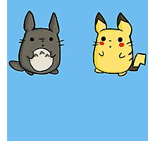 Totoro and Pikachu Photographic Print