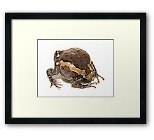 Somersault Framed Print