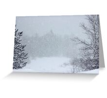 And the Snow Came Tumbling Down & Down Greeting Card