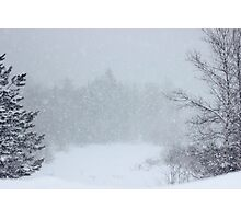 And the Snow Came Tumbling Down & Down Photographic Print