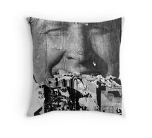 Poster Archaeology 24 Throw Pillow