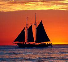 Smooth Seas by Gavin Reddrop