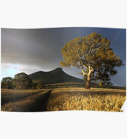 Wild Light over the Grampians, Dunkeld, Australia Poster