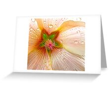 """After The Rain""  Greeting Card"