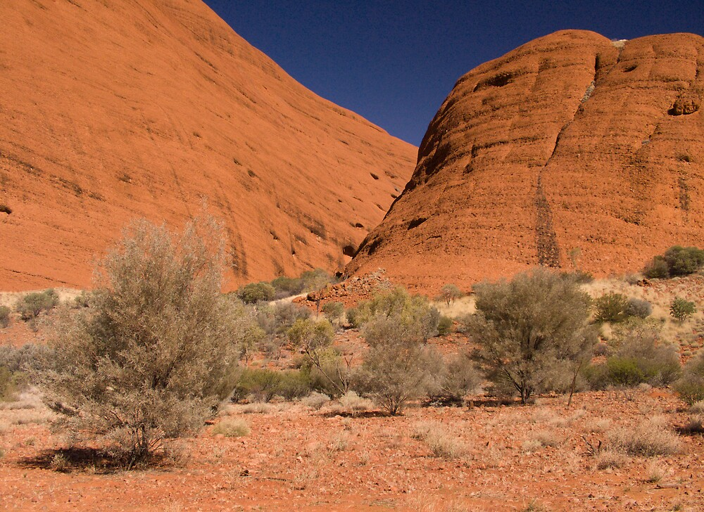 Olgas by daveoh