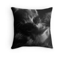 Kitten in Protection Throw Pillow