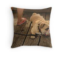 lt's a Dog's life Throw Pillow