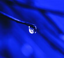 drip by SNAPPYDAVE