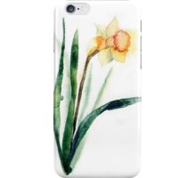 watercolor flower narcissus iPhone Case/Skin