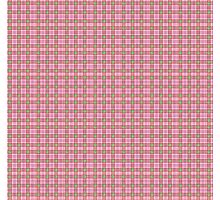 SneuvelNation - Borberry Pink/Red/Green Photographic Print