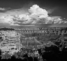 Grand View in B&W by EvaMcDermott
